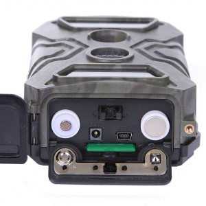 Wildkamera Funktionsweise
